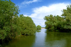 Danube delta landscape. Channel landscape in Danube Delta on blue sky with clouds Royalty Free Stock Photos