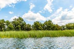 Danube Delta landscape Stock Photo