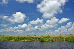 Danube delta, Romania Stock Photography