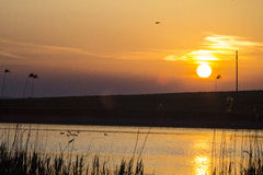 Danube Delta from Romania with a beautiful sunset Royalty Free Stock Images