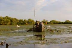 Fishermen checking nets at dawn in Danube Delta. Danube Delta, Romania - June 16, 2019: Fishermen checking nets at dawn in Danube Delta stock photos