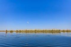 Danube Delta, Romania Royalty Free Stock Image