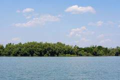 Danube Delta. Romania view from a boat stock image