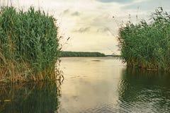 The Danube delta at sunset. Going fishing in Danube delta stock image