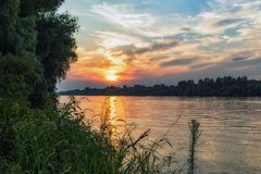 Danube Delta Vegetation and wildlife. Scenery from the wilderness of Danube Delta, blue sky, vegetation and wildlife, raw nature stock photo