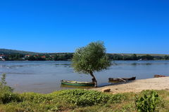 Danube Delta. View Danube Delta in Romania Royalty Free Stock Photos