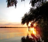 The Danube Delta Royalty Free Stock Images