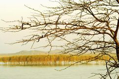 Danube in fall Royalty Free Stock Image