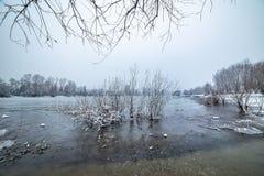 Danube island Šodroš near Novi Sad, Serbia. Colorful landscape with snowy trees, beautiful frozen river. Danube island Šodroš near Novi Sad, Serbia royalty free stock photo