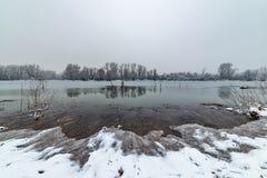 Danube island Šodroš near Novi Sad, Serbia. Colorful landscape with snowy trees, beautiful frozen river. Danube island Šodroš near Novi Sad, Serbia stock photo
