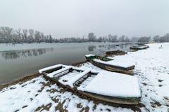 Danube island Šodroš near Novi Sad, Serbia. Colorful landscape with swans and beautiful frozen river. Danube island Šodroš near Novi Sad, Serbia royalty free stock photo