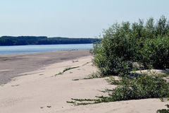 Danube island summer. Summer on the River Danube islands. The sand on the beach is hot stock photos