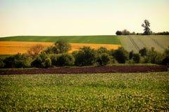 Danube plain Bulgaria. Royalty Free Stock Images