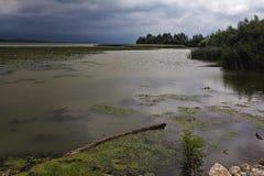 Danube River 2 Royaltyfri Foto