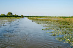 Danube river delta. Water channel royalty free stock photography
