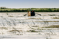 Danube river delta Royalty Free Stock Photos