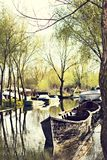 Danube river and fishing boat near the shore on a spring day. Channels along the streets like in Venice. Coast with reeds and water with a duckweed. Vilkovo royalty free stock images