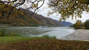 Danube River i höst Fotografering för Bildbyråer