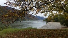 Danube River i höst Royaltyfri Foto
