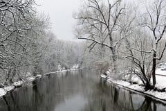 Danube River i tuttlingen Royaltyfri Fotografi