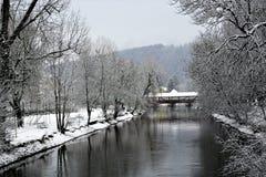 Danube River i tuttlingen Royaltyfria Bilder