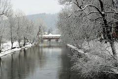 Danube River i tuttlingen Arkivbild