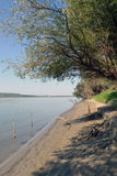 The Danube River in the morning. Lower Danube protected areas, canals, islands, forests with tree species of meadow, meadow vegetation, wildlife, people with stock photography