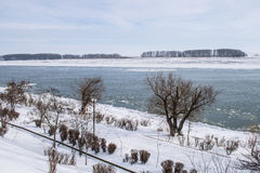 Danube river and trees in a city from Romania on a could winter day Royalty Free Stock Images