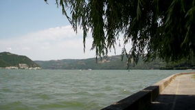 Danube River And Willow Tree With Wind Blowing Wildly. Super 35mm Camera - Peaceful Look At The Danube Bay From Donji Milanovac Towards Romania Border Pedestrian stock video