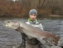 Danube salmon hucho fishing in central Europe royalty free stock photography