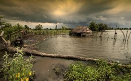 Danube storm. Stars coming storm flooded Danube Delta already stable Royalty Free Stock Photography