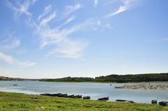 Danube, West of Harsova. Danube shore, west of Harsova, Romania, the summer 2013 Stock Photo