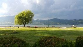 Danube wybrzeże przy Gornji Milanovac Zdjęcia Stock