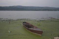 Danubio e vista dalla Serbia sulla Romania fotografie stock libere da diritti