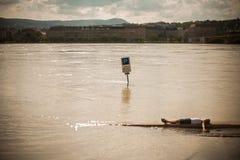 Danubio gonfiato Fotografie Stock Libere da Diritti
