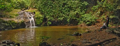 Free Danum Valley Conservation Area Royalty Free Stock Images - 162906529