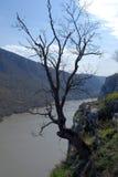 Danube Royalty Free Stock Images