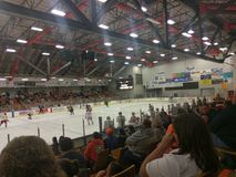 Danville-dashers Hockeyspiel Stockfotografie