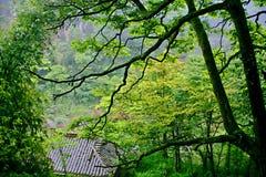 Danxia landform w Chishui Fotografia Stock