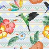 Danza étnica de los colibríes con diseño inconsútil de la materia textil del modelo del vector de los hibiscos libre illustration