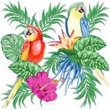 Danza étnica de los colibríes con diseño inconsútil de la materia textil del modelo del vector de los hibiscos stock de ilustración