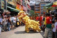 Danza china del león Imágenes de archivo libres de regalías