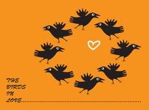 Danza de cuervos. Foto de archivo