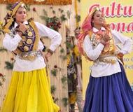 Danza de Haryanvi fotografía de archivo libre de regalías