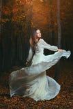 Danza de las hojas de otoño Imagen de archivo libre de regalías