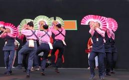 Danza de los gorriones Imágenes de archivo libres de regalías