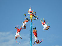 Danza de los Voladores (Dance of the Flyers) in Mexico. Stock Image