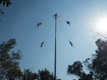 Danza De Los Voladores Tanczący ulotki, Palo Volador latający słup, ceremonia, rytuał zdjęcia royalty free