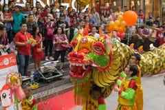 Danza del dragón y de león Fotografía de archivo libre de regalías