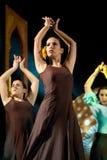 Danza del flamenco Fotografía de archivo libre de regalías